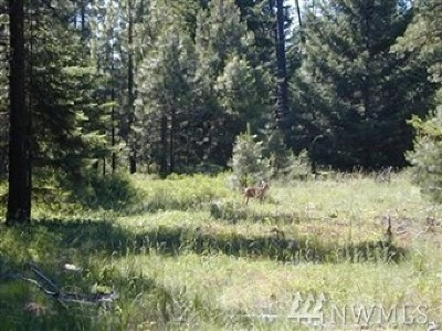 Residential Lots & Land For Sale: 410 Snowberry Lp