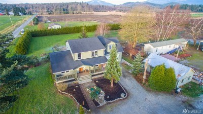 Skagit County Single Family Home For Sale: 8743 Green Rd