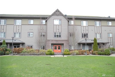 Issaquah Condo/Townhouse For Sale: 973 NE Ingram St #216