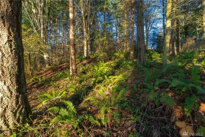 Stanwood Residential Lots & Land For Sale: McKee's Beach Rd