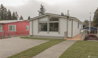 Seattle Single Family Home For Sale: 9811 18th Ave SW