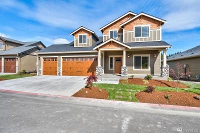 Poulsbo Single Family Home For Sale: 2424 NE Dynasty Dr