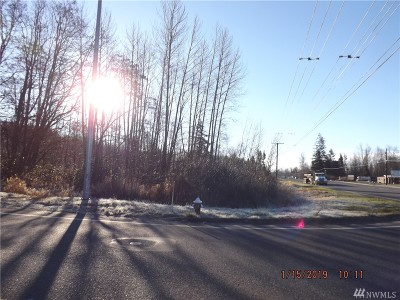 Bellingham Residential Lots & Land For Sale: 4770 Guide Meridian