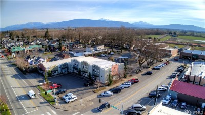 Lynden Commercial For Sale: 211 Grover St