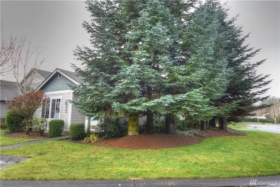 Olympia Single Family Home Pending: 8101 Trimble Lane SE