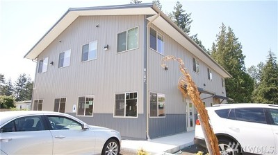 Ferndale Commercial For Sale: 6187 Portal Wy #B