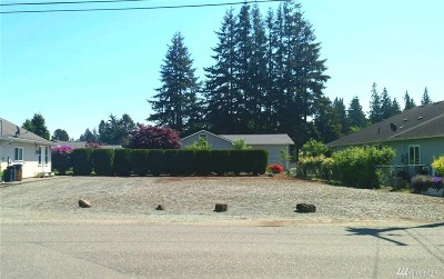 Sedro Woolley Residential Lots & Land For Sale: 303 N Central Ave