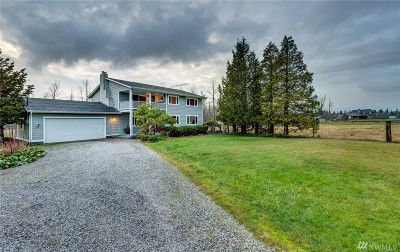 Everson, Nooksack Single Family Home Contingent: 8655 Trapline Rd