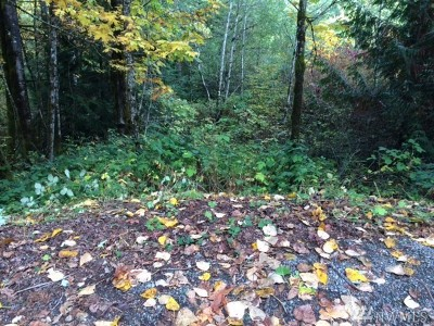 Issaquah Residential Lots & Land For Sale: 25116 SE 146th St