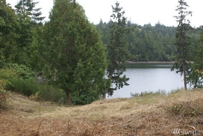 Longbranch WA Residential Lots & Land For Sale: $175,000