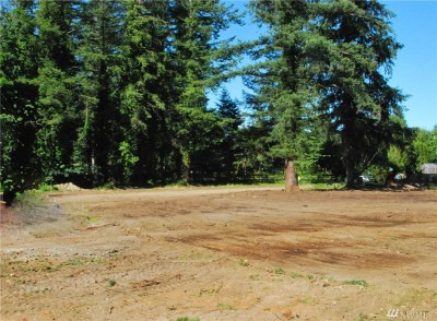 Gold Bar Residential Lots & Land For Sale: 601 6th St
