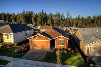 Lacey Single Family Home For Sale: 8614 Vashon Dr NE