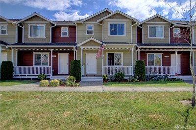 Sedro Woolley Single Family Home Sold: 334 Helen St