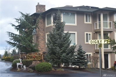Skagit County Condo/Townhouse Pending: 1419 Digby Place #206