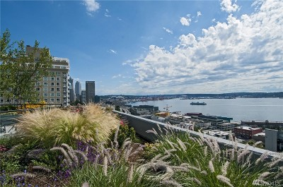Condo/Townhouse Sold: 2621 2nd Ave #705