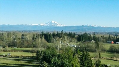 Whatcom County Single Family Home For Sale: 3167 Unick Rd