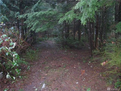 Maple Falls Residential Lots & Land For Sale: 6123 Willow Place