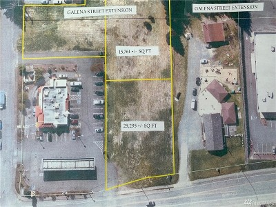Granite Falls Residential Lots & Land For Sale: 50 Stanley St