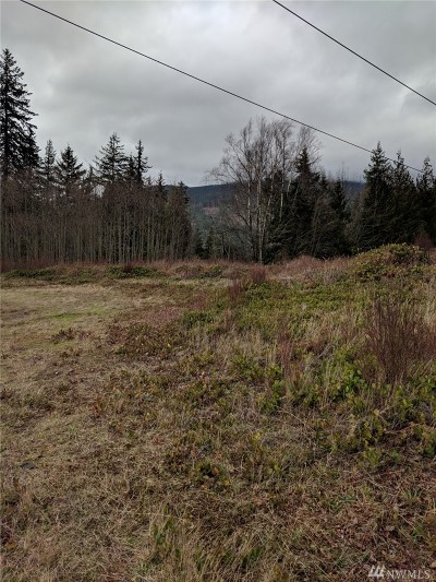 Sedro Woolley WA Residential Lots & Land For Sale: $99,999