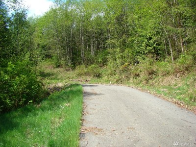 Skagit County Residential Lots & Land For Sale: 35403 Patriot Lane