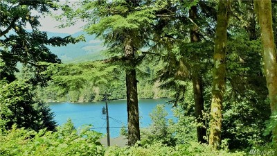Skagit County Residential Lots & Land For Sale: 33188 South Shore Dr