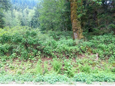 Skagit County Residential Lots & Land For Sale: South Shore Drive