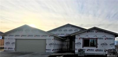 Moses Lake Single Family Home For Sale: 3435 Blue Heron Lane