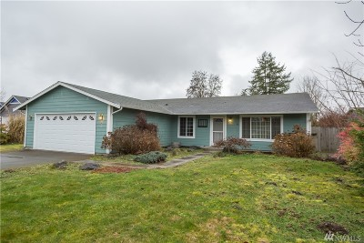 Olympia Single Family Home For Sale: 3931 87th Ave SE