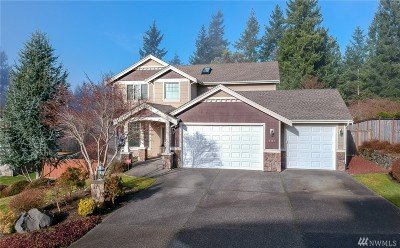 Gig Harbor Single Family Home For Sale: 6717 95th St Ct NW