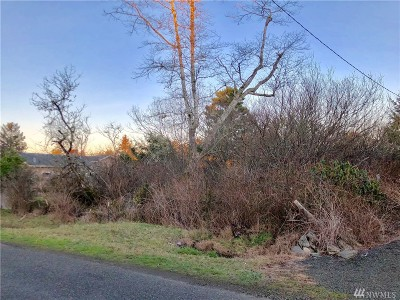 Grays Harbor County Residential Lots & Land For Sale: 1 N Hoquiam Lane