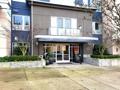 Condo/Townhouse Sold: 375 Kirkland Ave #346