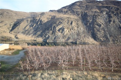 Chelan, Chelan Falls, Entiat, Manson, Brewster, Bridgeport, Orondo Residential Lots & Land For Sale: Us 97