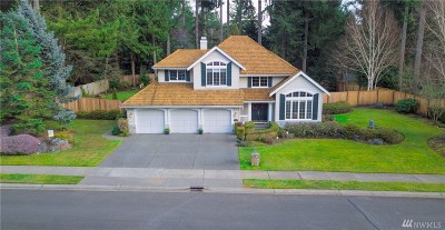 Gig Harbor Single Family Home For Sale: 2827 19th Av Ct NW