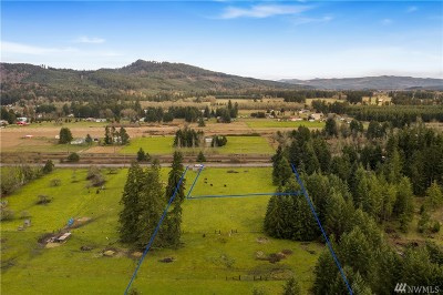 Tenino Residential Lots & Land For Sale: 18211 Bucoda Hwy SE