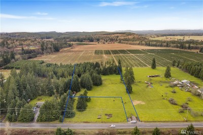 Residential Lots & Land For Sale: 18217 Bucoda Hwy SE