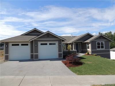 Single Family Home For Sale: 481 Morgison Loop