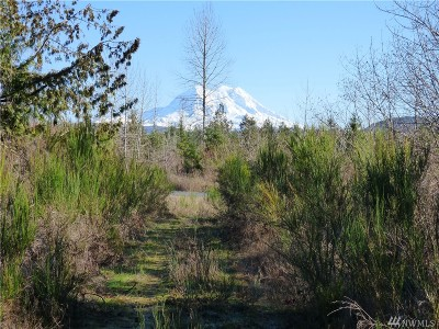 Eatonville Residential Lots & Land For Sale: 44610 River Ridge Dr E