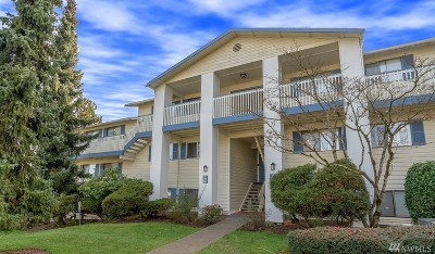 Everett Condo/Townhouse For Sale: 12906 8th Ave W #D203