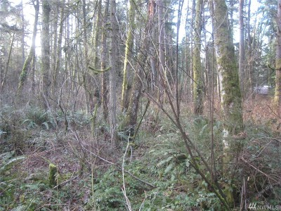 Stanwood Residential Lots & Land For Sale: 46 Xx Lot D 192nd St NW
