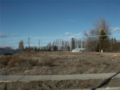 Residential Lots & Land For Sale: Blue Heron Lane