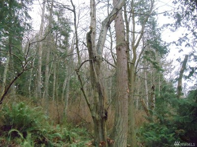 Camano Island Residential Lots & Land For Sale: Amber View Place