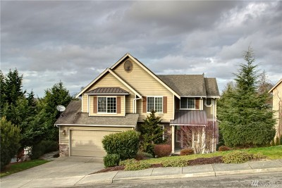 Skagit County Single Family Home For Sale: 2607 River Vista Lp