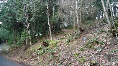 Sudden Valley Residential Lots & Land For Sale: 37 Stable Lane