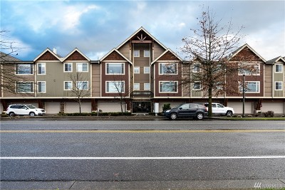 Lynden Condo/Townhouse Sold: 8780 Depot Rd #306