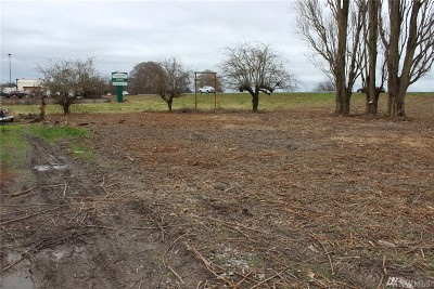 Stanwood Residential Lots & Land For Sale: 26827 94th Dr NW