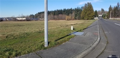 Blaine WA Residential Lots & Land For Sale: $1,147,000