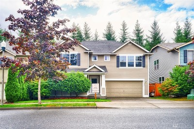 North Bend, Snoqualmie Single Family Home For Sale: 36325 SE Woody Creek Lane