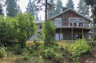Chelan County Single Family Home For Sale: 3096 Tamarack Place