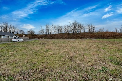 Sumas Residential Lots & Land For Sale: 575 Arthurs Wy