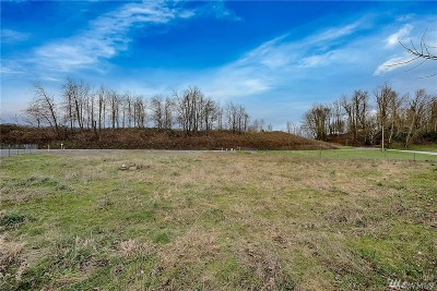 Sumas Residential Lots & Land For Sale: 583 Arthurs Wy